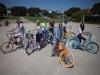pedego-electric-bikes