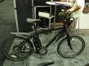 F4W Peak electric bike