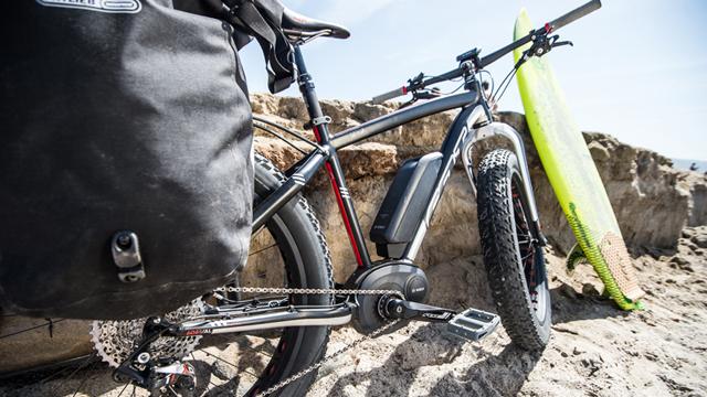 The Felt Lebowsk-e fat electric bike.