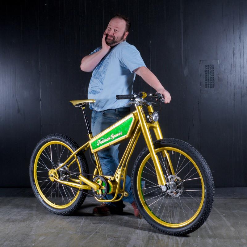 peacock groove electric bike 3