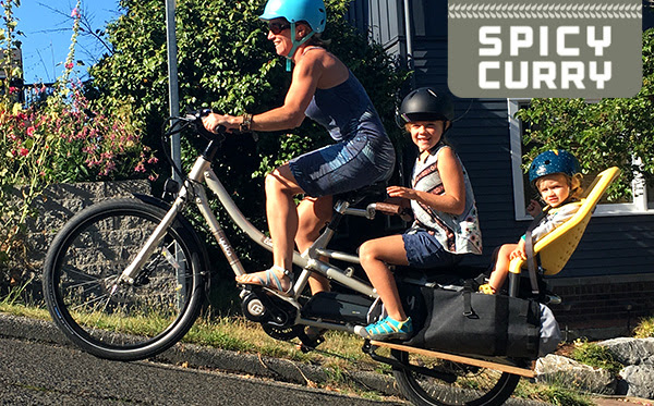Yuba Spicy Curry electric cargo bike grey