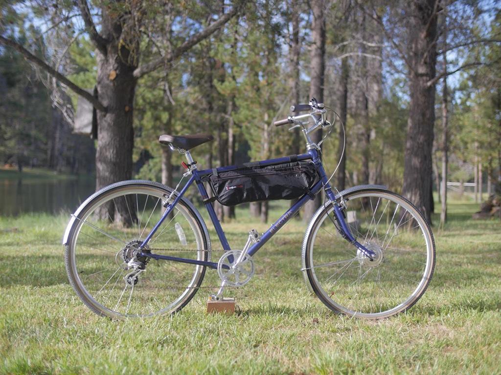 e-bike conversion kits - Leed 250watt review
